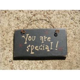 1004S- You are Special mini wood sign