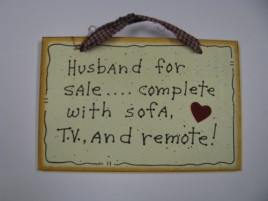 35231H Husband for sale...complete with sofa, T.V. and remote!