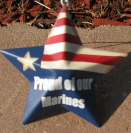 OR225 - Proud Marines - Metal Star